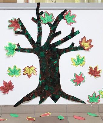 http://maternelle.sennecey.free.fr/images/a/arbres_automne_201411_01_1600.jpg